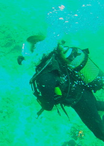 Steef diving at the Anchor reef in Ponta do Ouro.