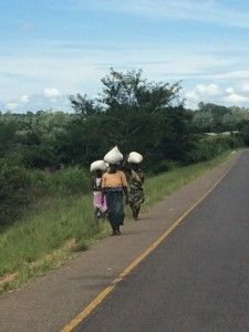 It's mostly women carrying stuff along the roads.