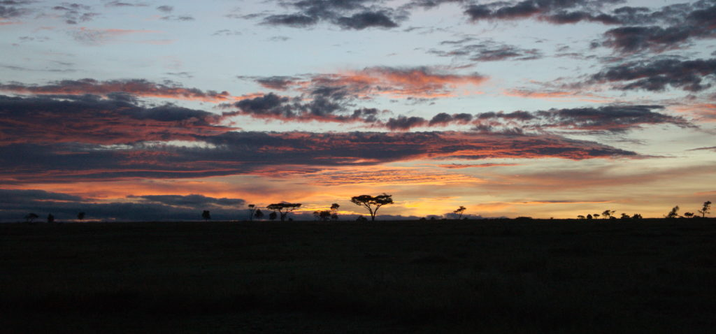 Movie-like sunup over Serengeti plains.